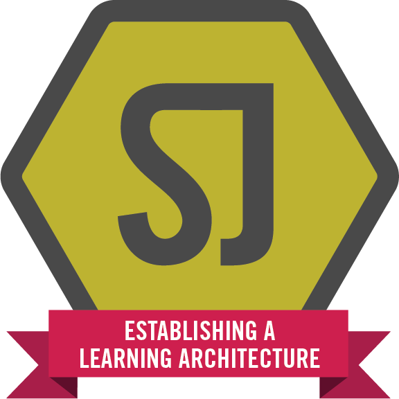 Establishing a learning architecture